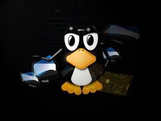 在Linux机器上配置DNS服务器的三种方法